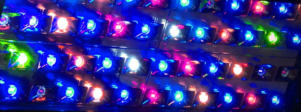 Horticoled - LED Couleur XMAX